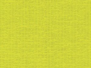 Soltis_92_2157_ANISEED-796-800-600-80
